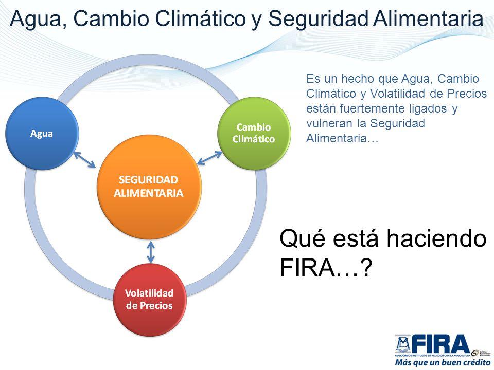 Es un hecho que Agua, Cambio Climático y Volatilidad de Precios están fuertemente ligados y vulneran la Seguridad Alimentaria… Qué está haciendo FIRA…?