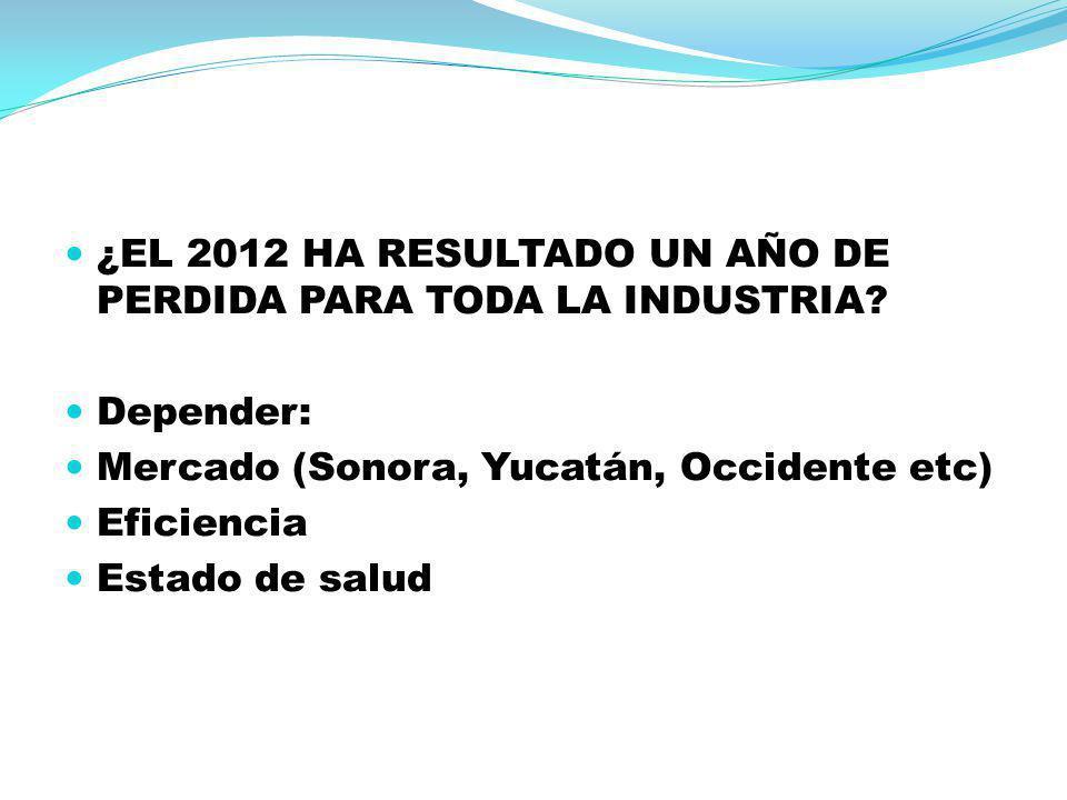 ¿EL 2012 HA RESULTADO UN AÑO DE PERDIDA PARA TODA LA INDUSTRIA? Depender: Mercado (Sonora, Yucatán, Occidente etc) Eficiencia Estado de salud