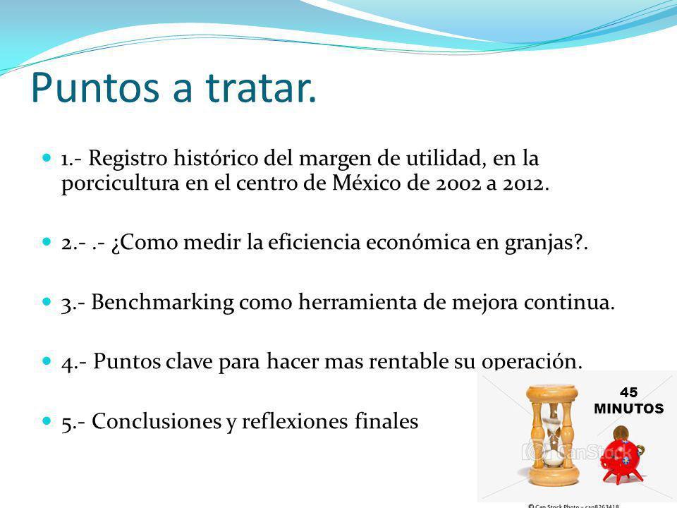 Puntos a tratar. 1.- Registro histórico del margen de utilidad, en la porcicultura en el centro de México de 2002 a 2012. 2.-.- ¿Como medir la eficien