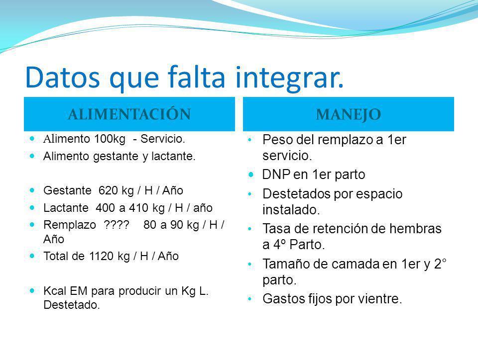 Datos que falta integrar. ALIMENTACIÓN Al imento 100kg - Servicio. Alimento gestante y lactante. Gestante 620 kg / H / Año Lactante 400 a 410 kg / H /