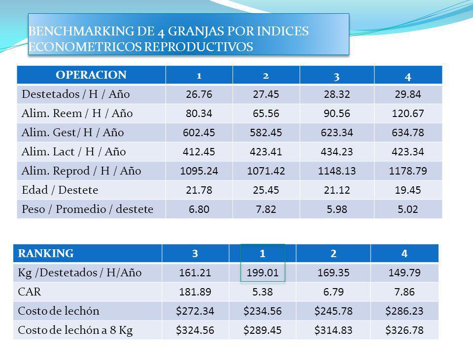 BENCHMARKING DE 4 GRANJAS POR INDICES ECONOMETRICOS REPRODUCTIVOS OPERACION1234 Destetados / H / Año26.7627.4528.3229.84 Alim. Reem / H / Año80.3465.5