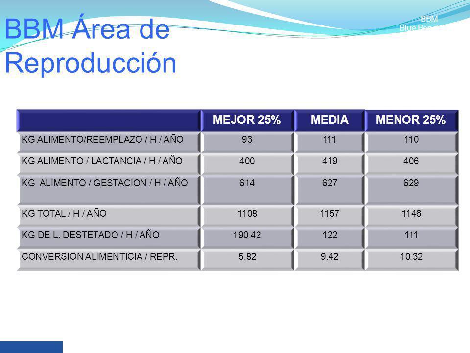 BBM Área de Reproducción MEJOR 25%MEDIAMENOR 25% KG ALIMENTO/REEMPLAZO / H / AÑO93111110 KG ALIMENTO / LACTANCIA / H / AÑO400419406 KG ALIMENTO / GEST