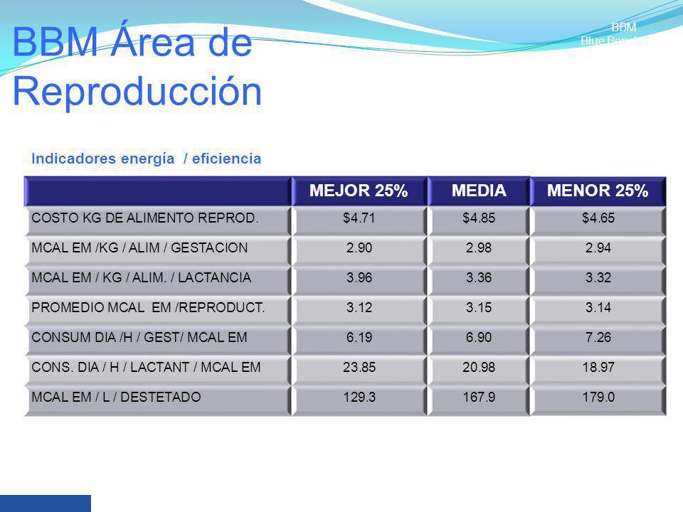 BBM Área de Reproducción MEJOR 25%MEDIAMENOR 25% COSTO KG DE ALIMENTO REPROD.$4.71$4.85$4.65 MCAL EM /KG / ALIM / GESTACION2.902.982.94 MCAL EM / KG /