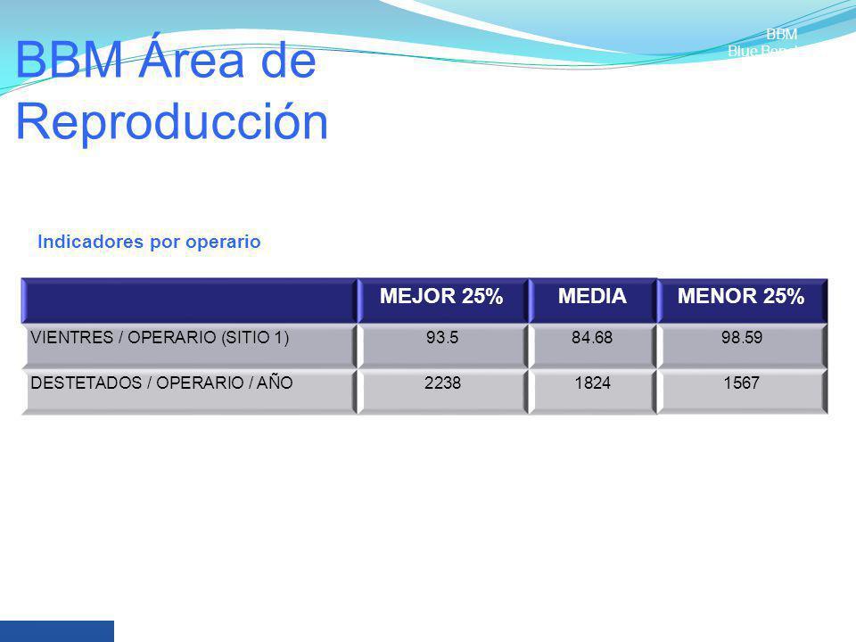 BBM Área de Reproducción MEJOR 25%MEDIAMENOR 25% VIENTRES / OPERARIO (SITIO 1)93.584.6898.59 DESTETADOS / OPERARIO / AÑO223818241567 Indicadores por o