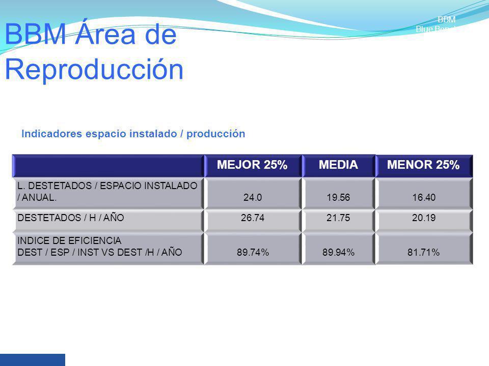 BBM Área de Reproducción MEJOR 25%MEDIAMENOR 25% L. DESTETADOS / ESPACIO INSTALADO / ANUAL.24.019.5616.40 DESTETADOS / H / AÑO26.7421.7520.19 INDICE D