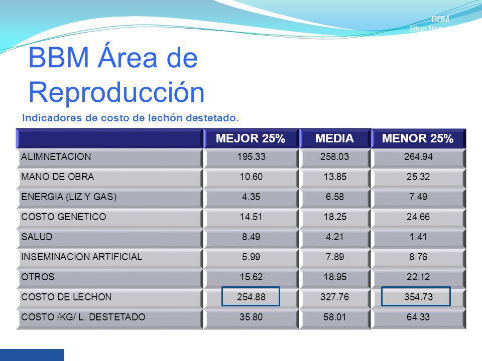 BBM Área de Reproducción MEJOR 25%MEDIAMENOR 25% ALIMNETACION195.33258.03264.94 MANO DE OBRA10.6013.8525.32 ENERGIA (LIZ Y GAS)4.356.587.49 COSTO GENE