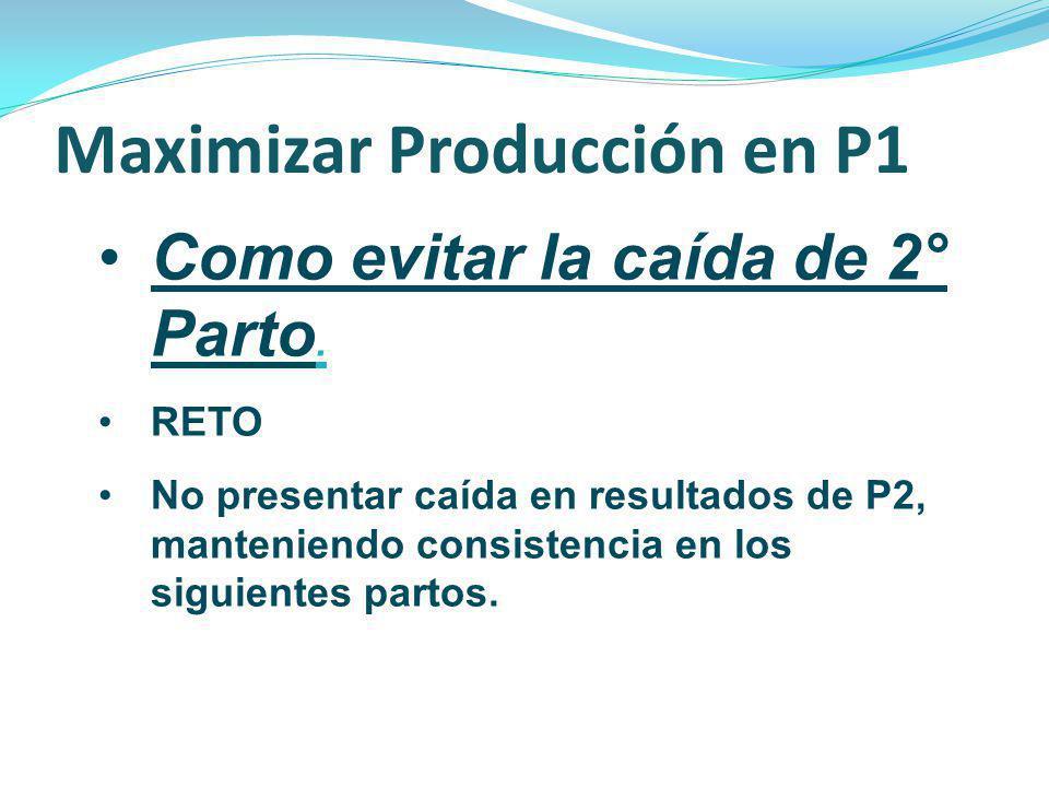 Como evitar la caída de 2° Parto. RETO No presentar caída en resultados de P2, manteniendo consistencia en los siguientes partos. Maximizar Producción