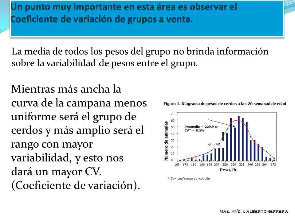 La media de todos los pesos del grupo no brinda información sobre la variabilidad de pesos entre el grupo. MAE. MVZ J. ALBERTO HERRERA 96.2 Kg Mientra