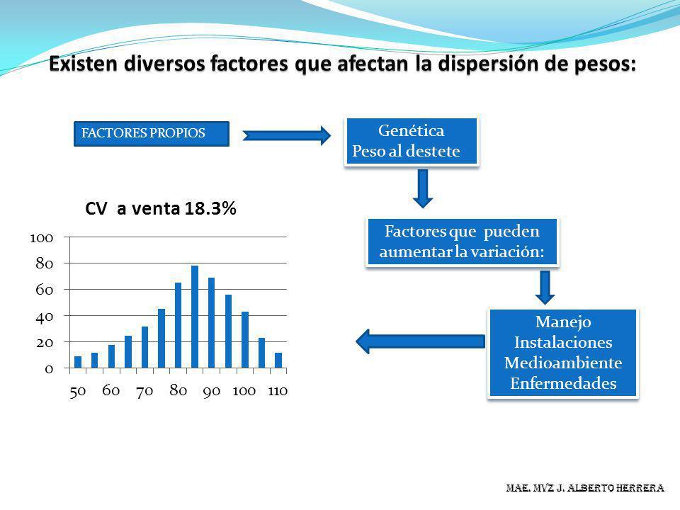 MAE. MVZ J. ALBERTO HERRERA FACTORES PROPIOS Genética Peso al destete Genética Peso al destete Factores que pueden aumentar la variación: Manejo Insta