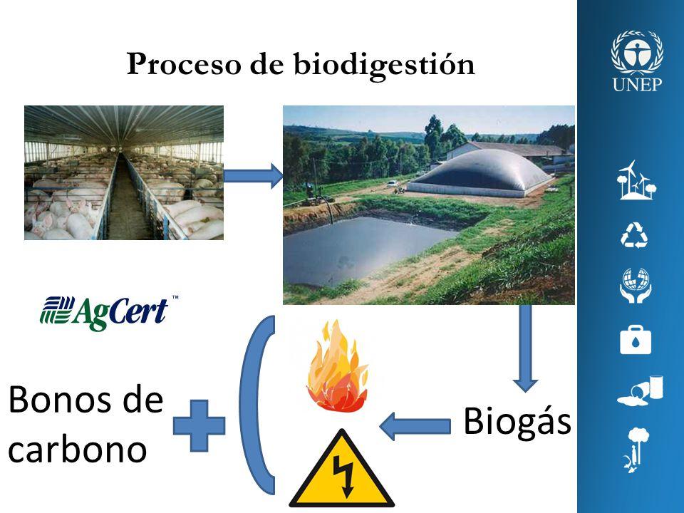 Proceso de biodigestión Biogás Bonos de carbono