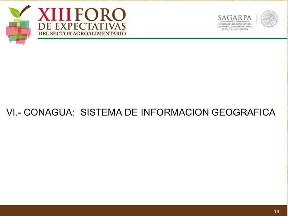 VI.- CONAGUA: SISTEMA DE INFORMACION GEOGRAFICA 19