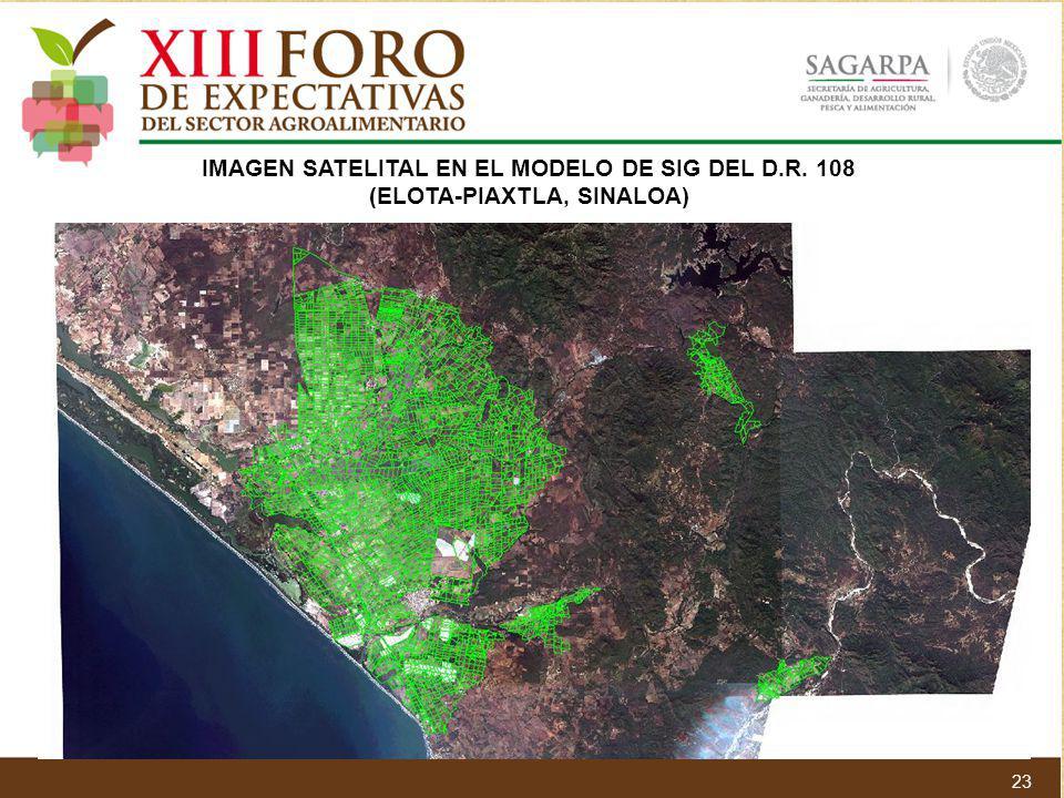 IMAGEN SATELITAL EN EL MODELO DE SIG DEL D.R. 108 (ELOTA-PIAXTLA, SINALOA) 23
