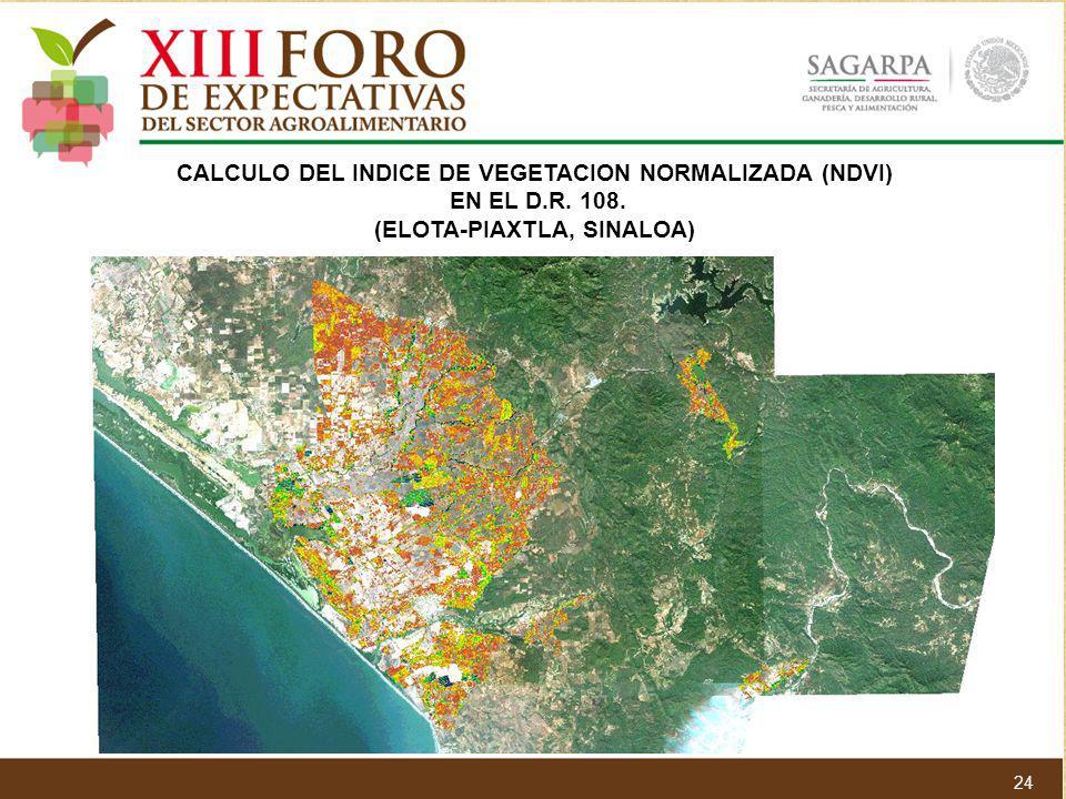CALCULO DEL INDICE DE VEGETACION NORMALIZADA (NDVI) EN EL D.R. 108. (ELOTA-PIAXTLA, SINALOA) 24
