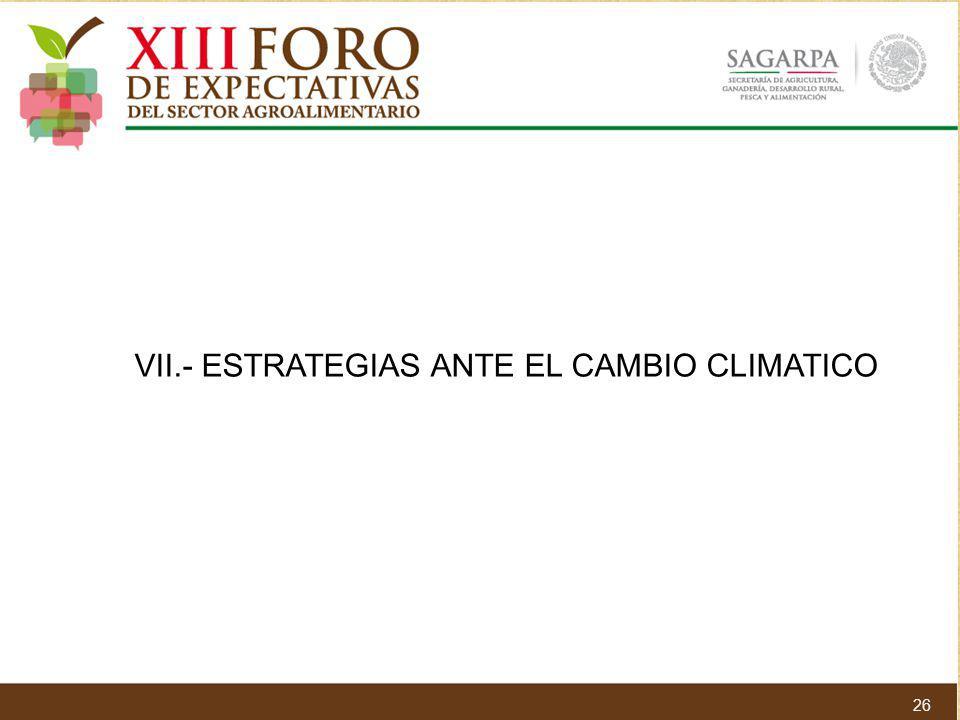 VII.- ESTRATEGIAS ANTE EL CAMBIO CLIMATICO 26