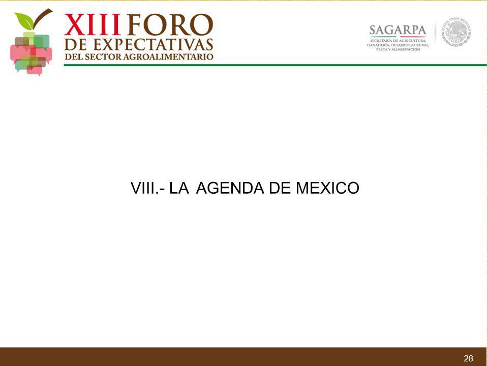 28 VIII.- LA AGENDA DE MEXICO