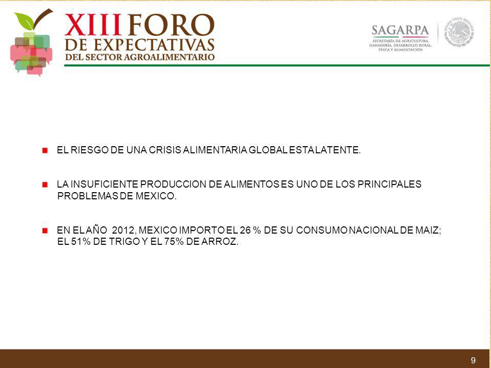 EL RIESGO DE UNA CRISIS ALIMENTARIA GLOBAL ESTA LATENTE. LA INSUFICIENTE PRODUCCION DE ALIMENTOS ES UNO DE LOS PRINCIPALES PROBLEMAS DE MEXICO. EN EL