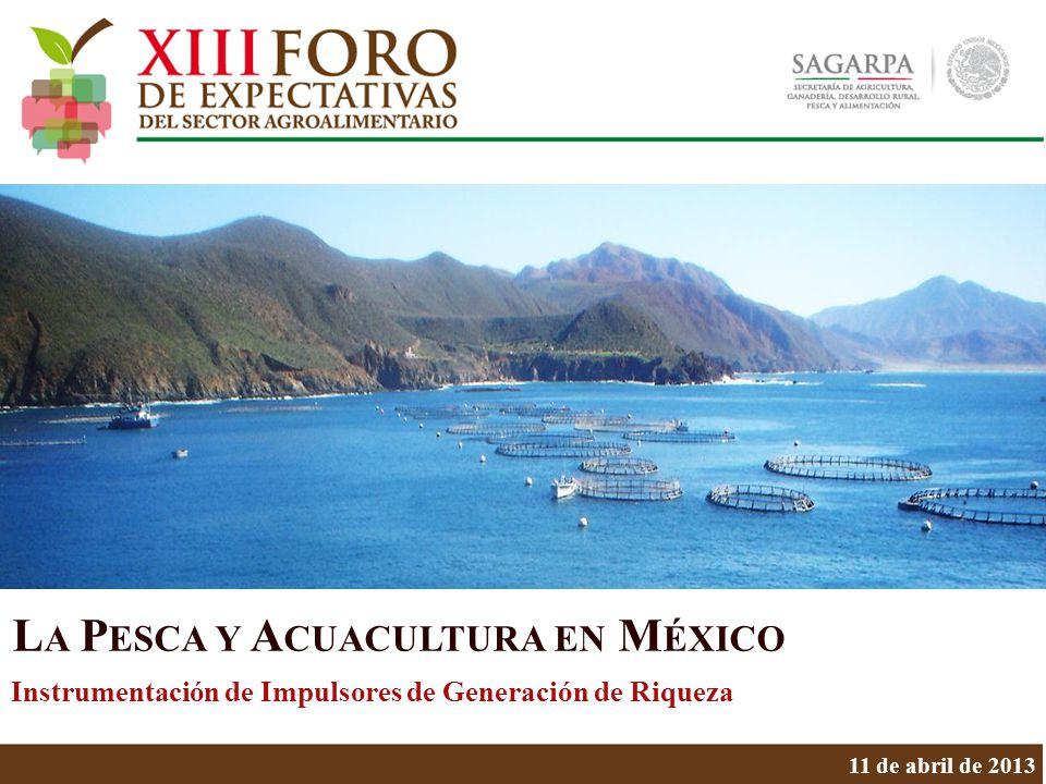 11 de abril de 2013 L A P ESCA Y A CUACULTURA EN M ÉXICO Instrumentación de Impulsores de Generación de Riqueza