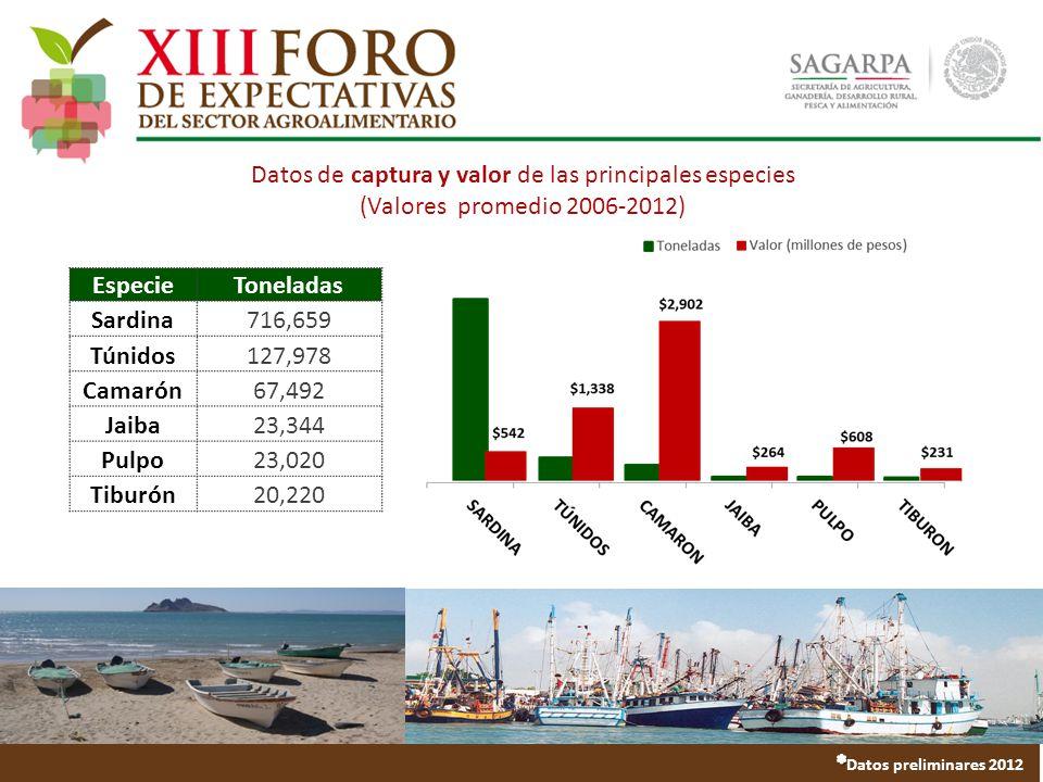 Datos de captura y valor de las principales especies (Valores promedio 2006-2012) EspecieToneladas Sardina716,659 Túnidos127,978 Camarón67,492 Jaiba23,344 Pulpo23,020 Tiburón20,220