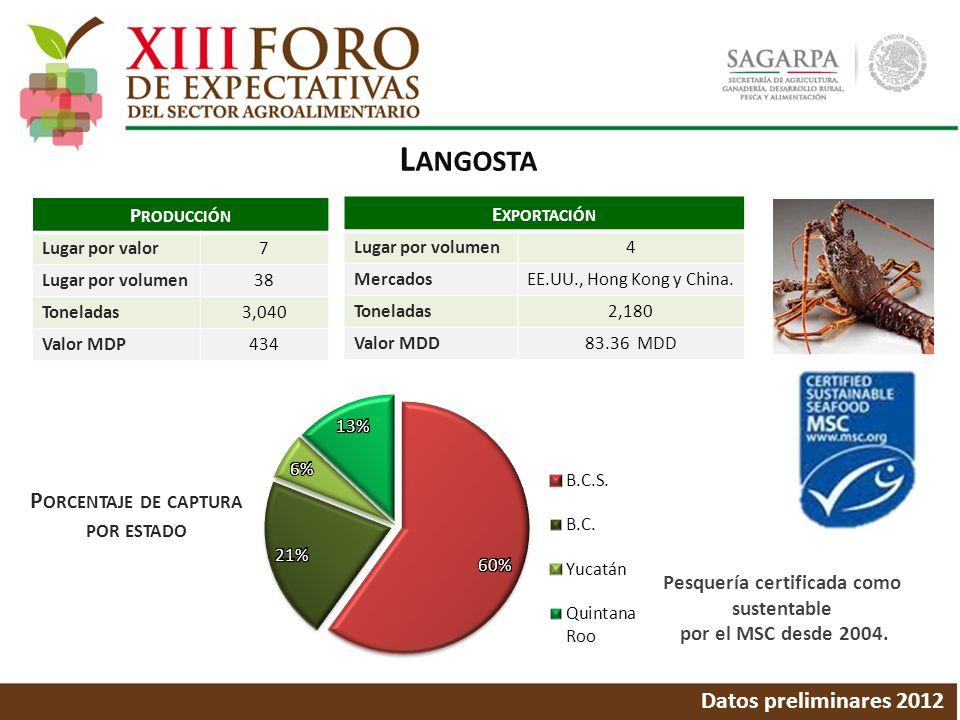 L ANGOSTA Datos preliminares 2012 P ORCENTAJE DE CAPTURA POR ESTADO P RODUCCIÓN Lugar por valor7 Lugar por volumen38 Toneladas3,040 Valor MDP434 E XPO
