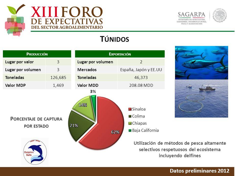 T ÚNIDOS Datos preliminares 2012 P ORCENTAJE DE CAPTURA POR ESTADO P RODUCCIÓN Lugar por valor3 Lugar por volumen3 Toneladas126,685 Valor MDP1,469 E XPORTACIÓN Lugar por volumen2 MercadosEspaña, Japón y EE.UU Toneladas46,373 Valor MDD208.08 MDD Utilización de métodos de pesca altamente selectivos respetuosos del ecosistema incluyendo delfines