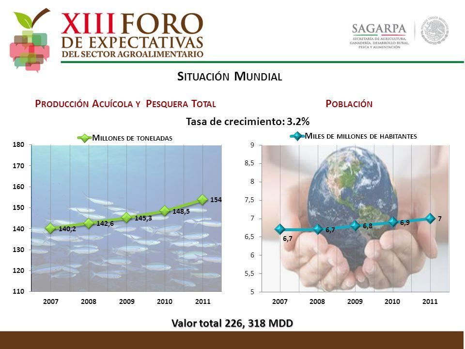 P RODUCCIÓN A CUÍCOLA Y P ESQUERA T OTAL S ITUACIÓN M UNDIAL P OBLACIÓN Tasa de crecimiento: 3.2% Valor total 226, 318 MDD