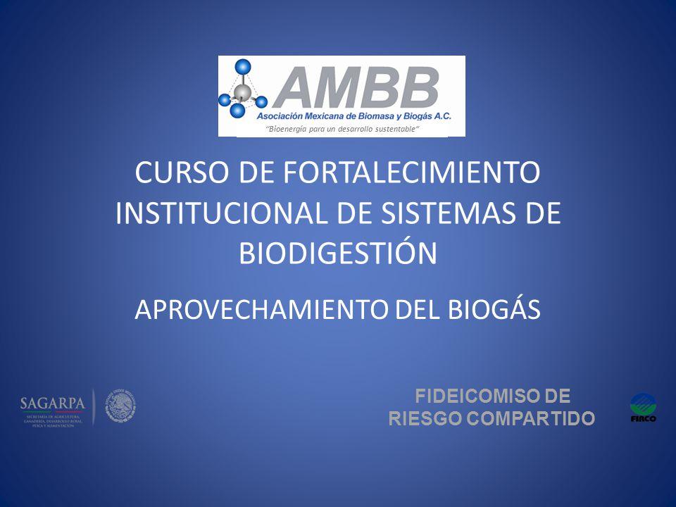 CURSO DE FORTALECIMIENTO INSTITUCIONAL DE SISTEMAS DE BIODIGESTIÓN APROVECHAMIENTO DEL BIOGÁS FIDEICOMISO DE RIESGO COMPARTIDO Bioenergía para un desa