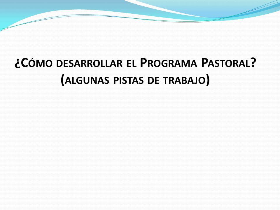 ¿C ÓMO DESARROLLAR EL P ROGRAMA P ASTORAL ( ALGUNAS PISTAS DE TRABAJO )