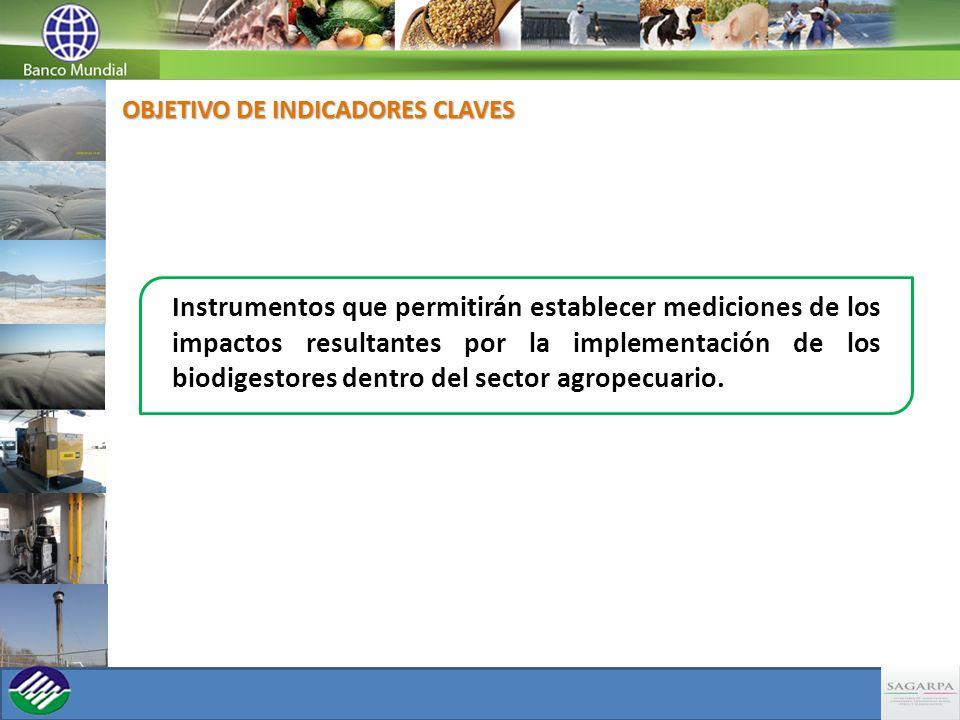 Instrumentos que permitirán establecer mediciones de los impactos resultantes por la implementación de los biodigestores dentro del sector agropecuario.