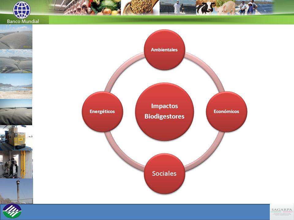 Impactos Biodigestores Ambientales Económicos Sociales Energéticos