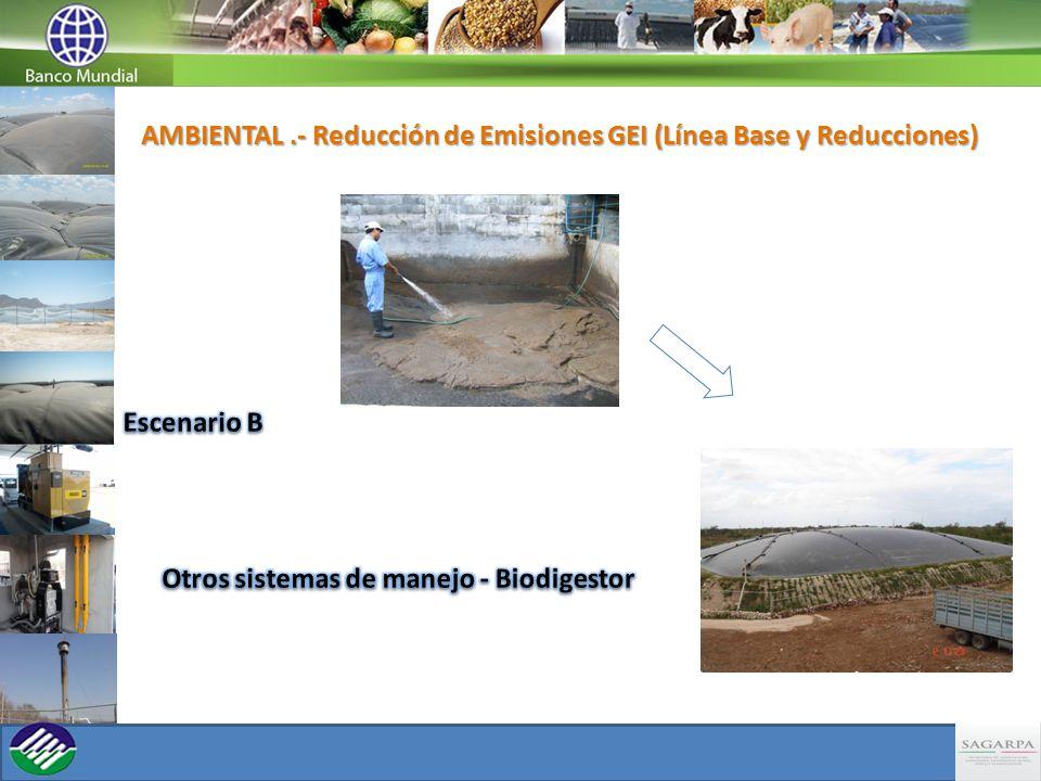 La Metodología que determina la línea base ambiental se encuentra establecida en base de acuerdo en la Approved consolidated baseline methodology ACM0010, y tomando los valores indicados en las tablas del Chapter 10, Emissions From Livestock And Manure Management, mediante la siguiente fórmula: BE CH4, y = GWP CH4 * D CH4 * MCF j * B 0,LT * N LT * VS LT,y *MS% Bl,j Determinación Línea Base Biodigestores