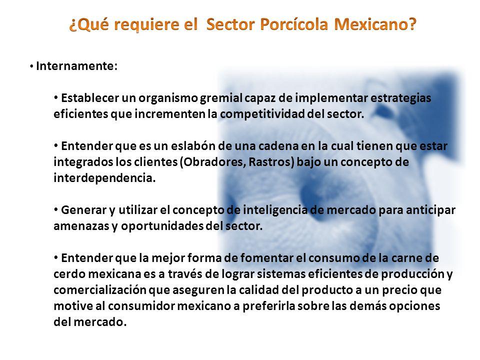 Internamente: Establecer un organismo gremial capaz de implementar estrategias eficientes que incrementen la competitividad del sector.