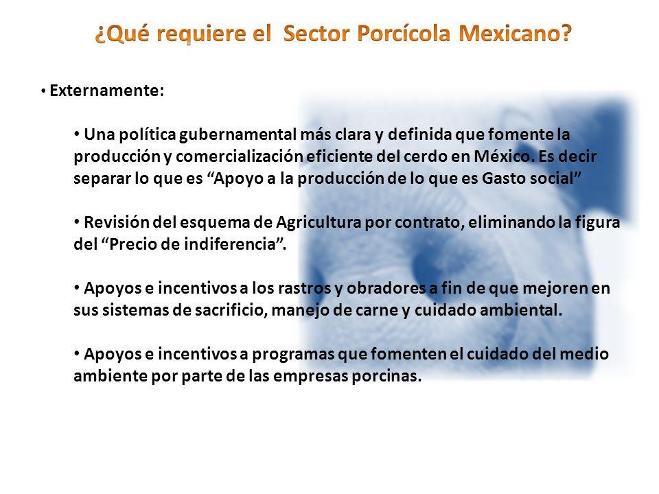 Externamente: Una política gubernamental más clara y definida que fomente la producción y comercialización eficiente del cerdo en México.