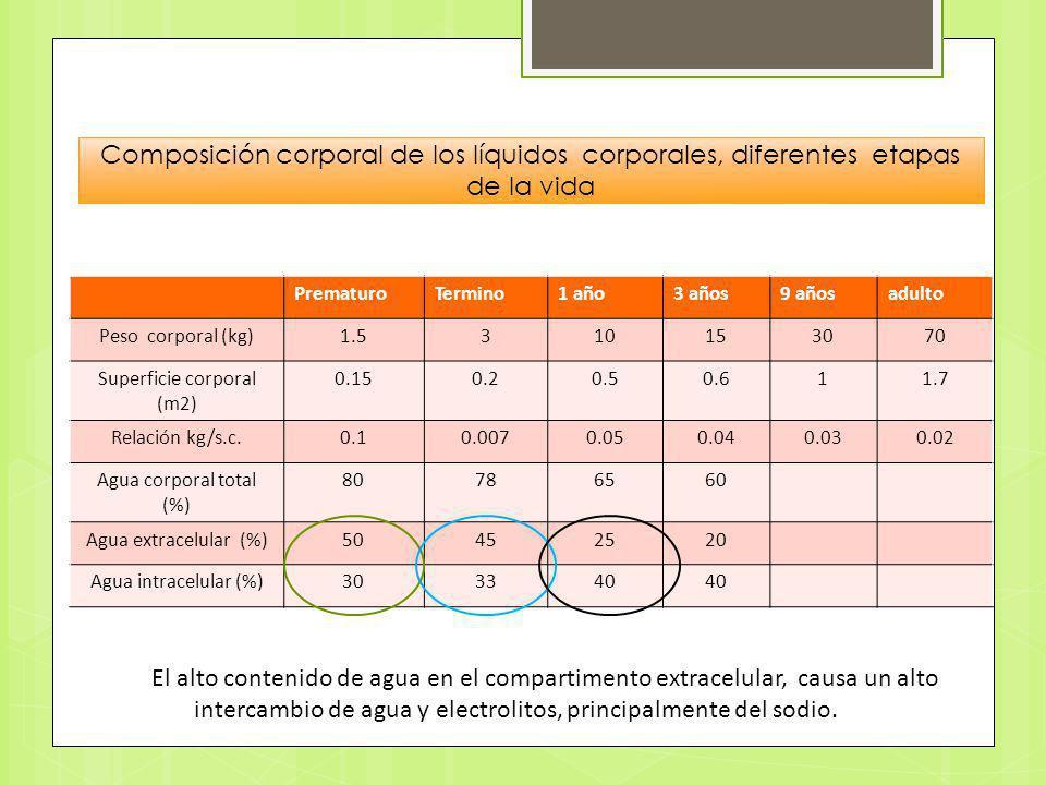 PrematuroTermino1 año3 años9 añosadulto Peso corporal (kg)1.5310153070 Superficie corporal (m2) 0.150.20.50.611.7 Relación kg/s.c.0.10.0070.050.040.03