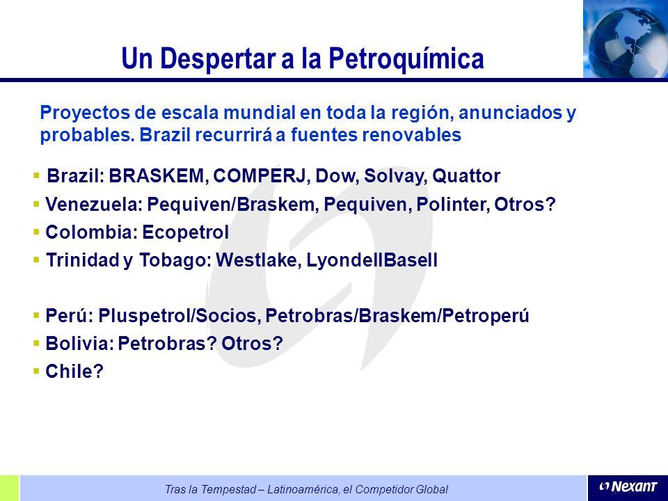 Tras la Tempestad – Latinoamérica, el Competidor Global Un Despertar a la Petroquímica Brazil: BRASKEM, COMPERJ, Dow, Solvay, Quattor Venezuela: Pequi