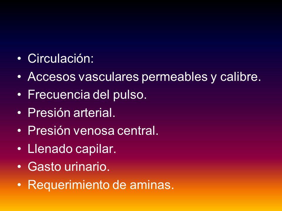 Circulación: Accesos vasculares permeables y calibre.