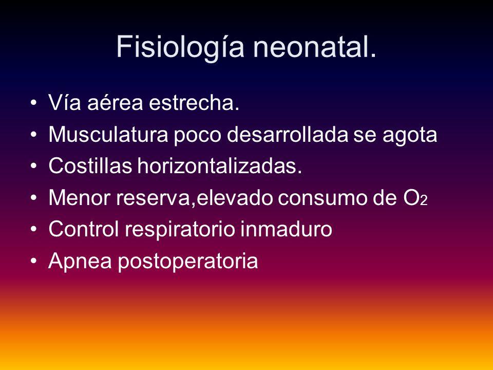 Fisiología neonatal.Vía aérea estrecha.