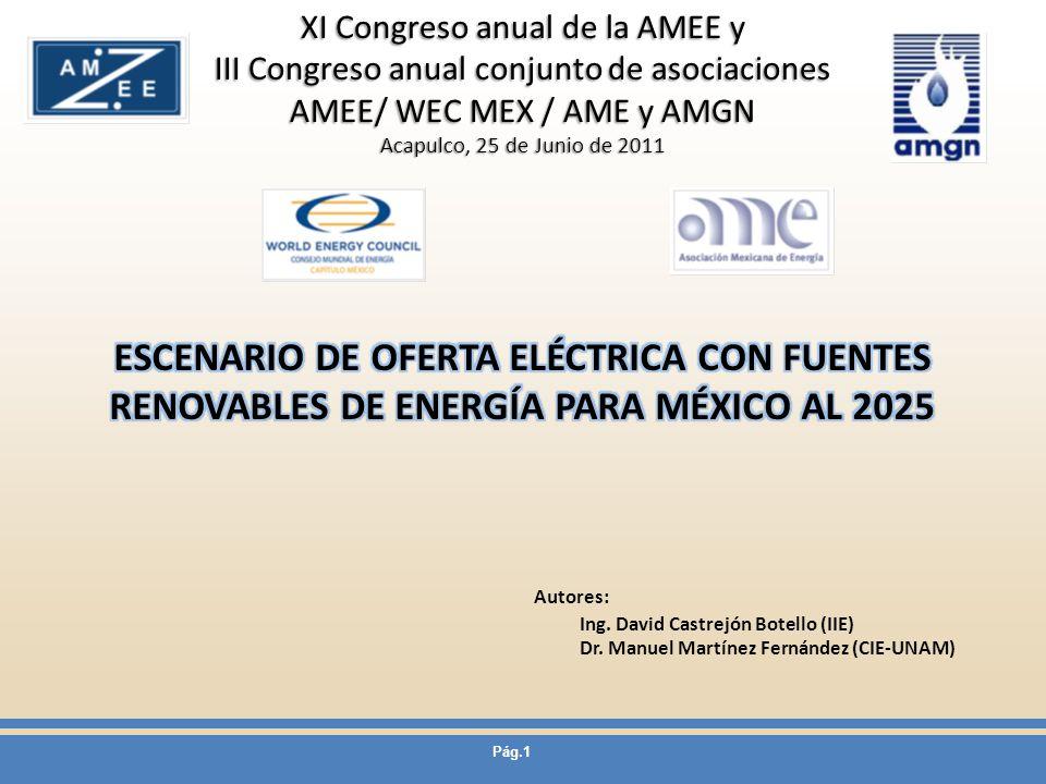Pág.1 Autores: Ing. David Castrejón Botello (IIE) Dr. Manuel Martínez Fernández (CIE-UNAM) XI Congreso anual de la AMEE y III Congreso anual conjunto