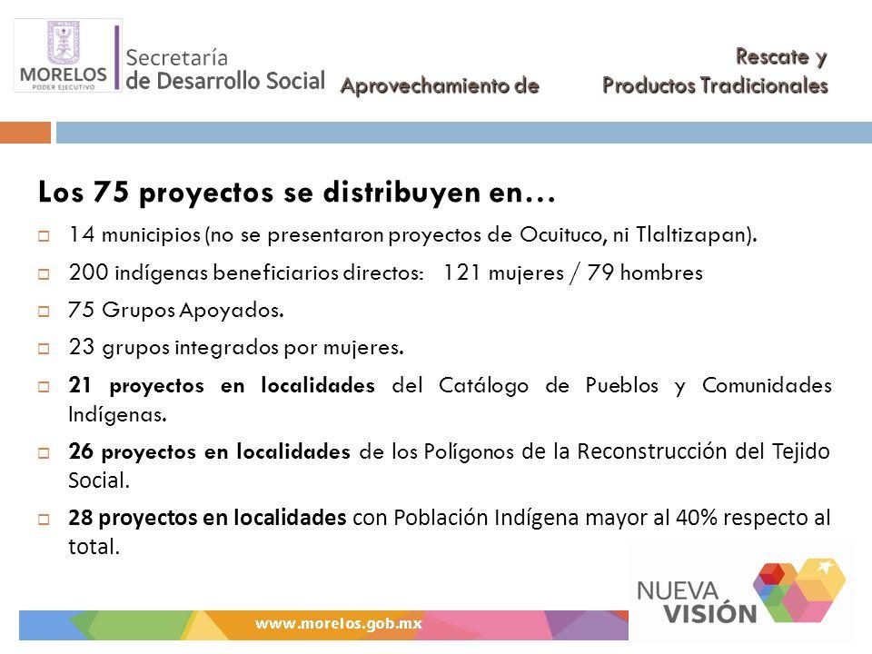 Rescate y Aprovechamiento de Productos Tradicionales Los 75 proyectos se distribuyen en… 14 municipios (no se presentaron proyectos de Ocuituco, ni Tlaltizapan).