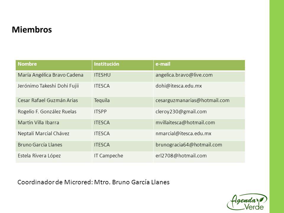 Miembros Responsable : Mtro. Bruno García Llanes NombreInstitucióne-mail María Angélica Bravo CadenaITESHUangelica.bravo@live.com Jerónimo Takeshi Doh