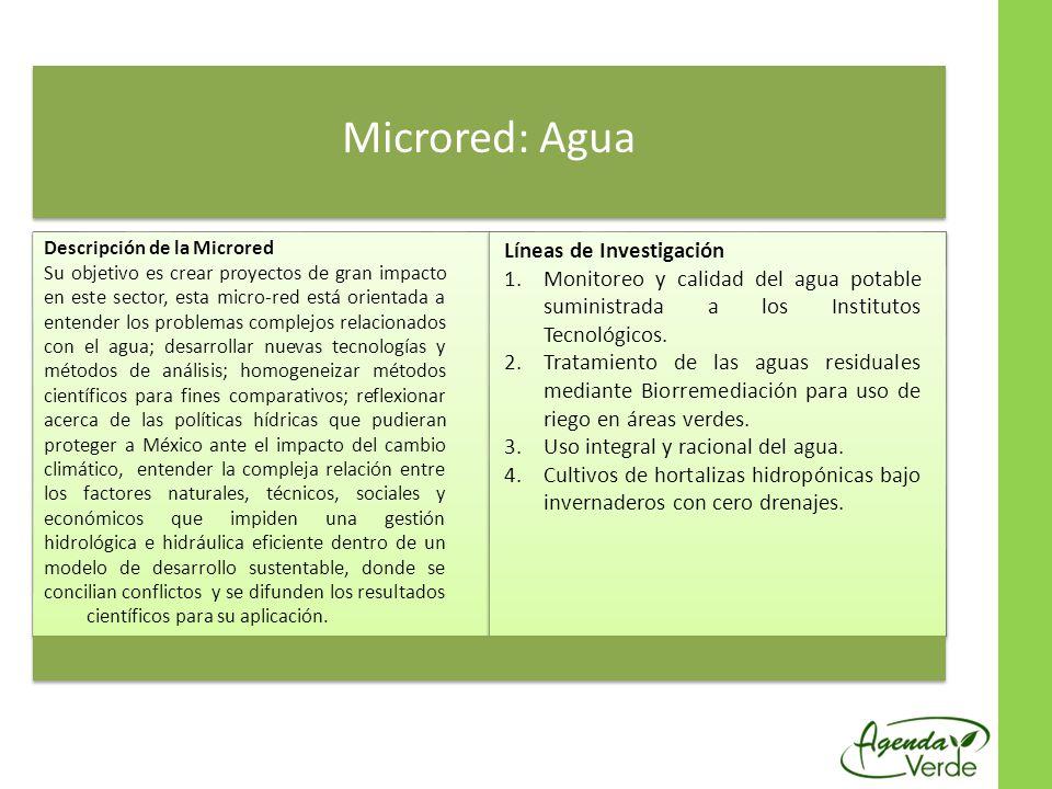 Microred: Agua Descripción de la Microred Su objetivo es crear proyectos de gran impacto en este sector, esta micro-red está orientada a entender los
