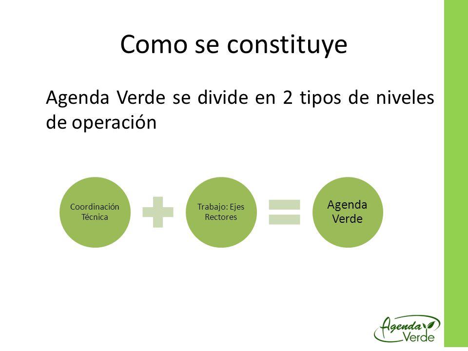 Como se constituye Agenda Verde se divide en 2 tipos de niveles de operación Coordinación Técnica Trabajo: Ejes Rectores Agenda Verde