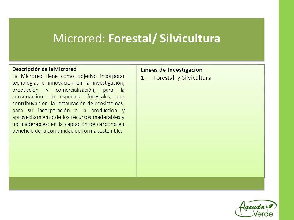Microred: Forestal/ Silvicultura Descripción de la Microred La Microred tiene como objetivo incorporar tecnologías e innovación en la investigación, producción y comercialización, para la conservación de especies forestales, que contribuyan en la restauración de ecosistemas, para su incorporación a la producción y aprovechamiento de los recursos maderables y no maderables; en la captación de carbono en beneficio de la comunidad de forma sostenible.