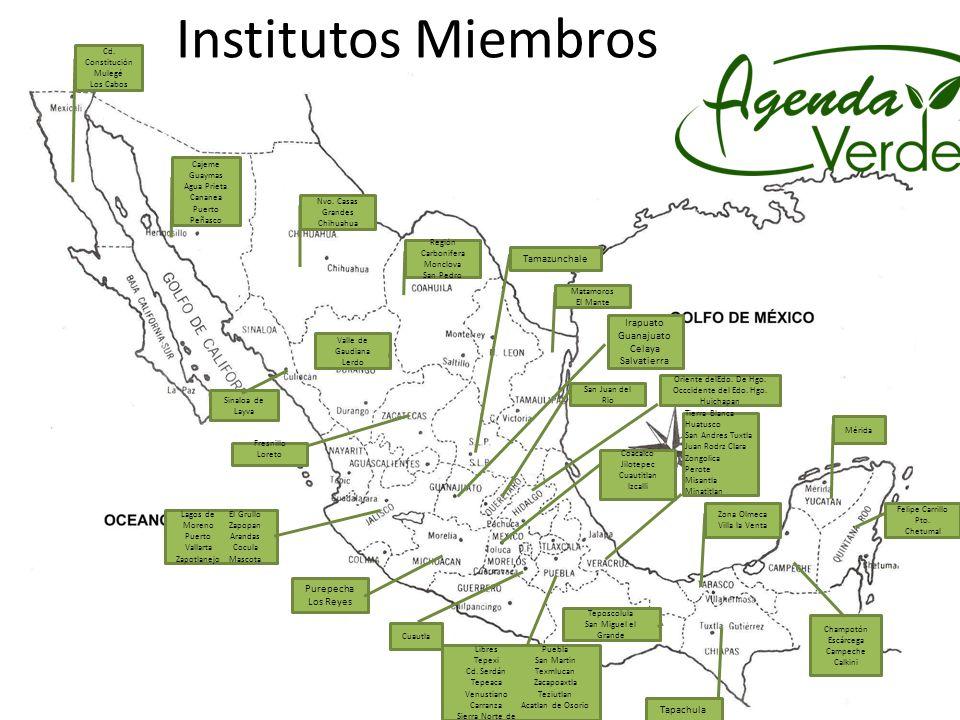 Institutos Miembros Zona Olmeca Villa la Venta Teposcolula San Miguel el Grande Sinaloa de Layva Purepecha Los Reyes Tamazunchale Tapachula Champotón