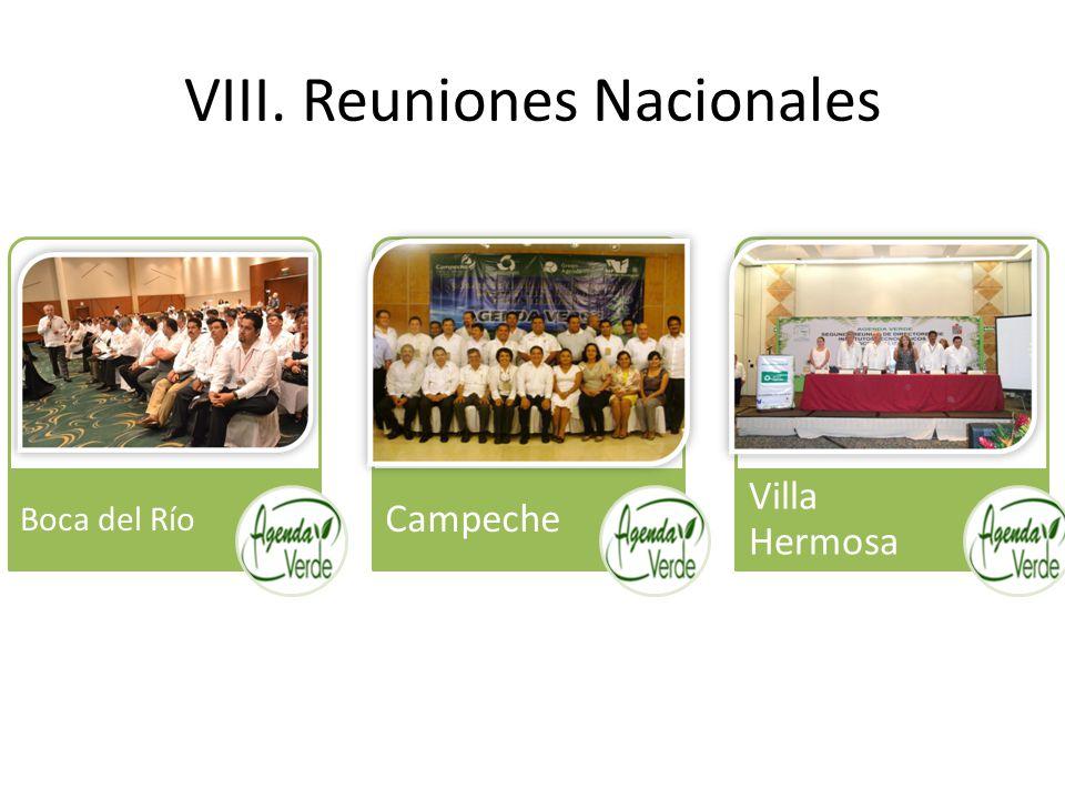 VIII. Reuniones Nacionales Boca del Río Campeche Villa Hermosa