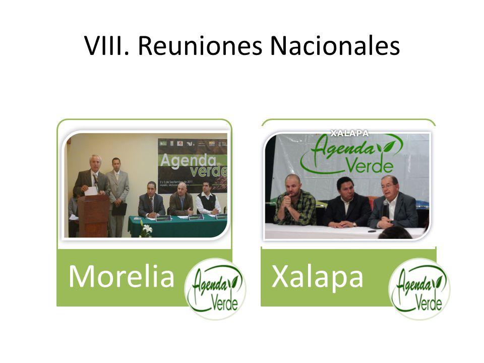 VIII. Reuniones Nacionales MoreliaXalapa
