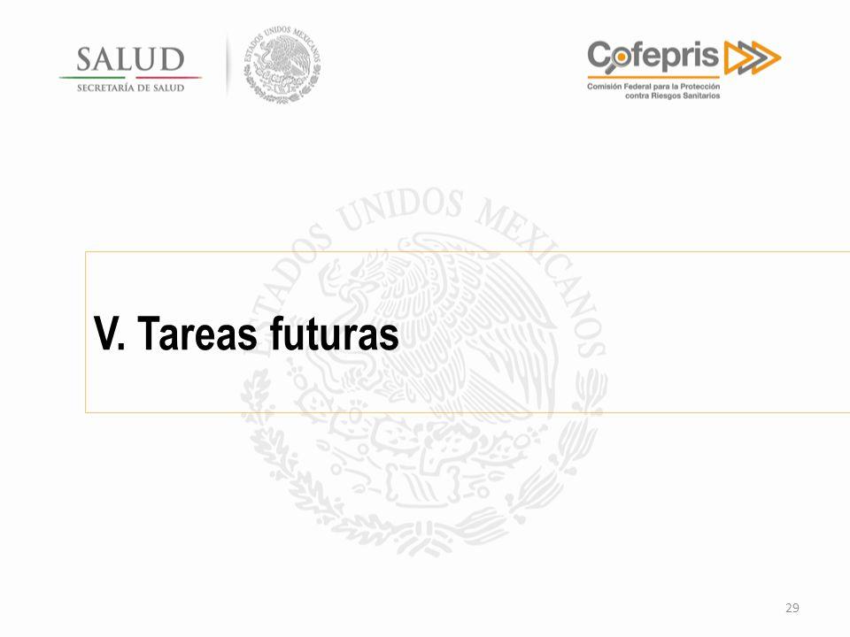 V. Tareas futuras 29