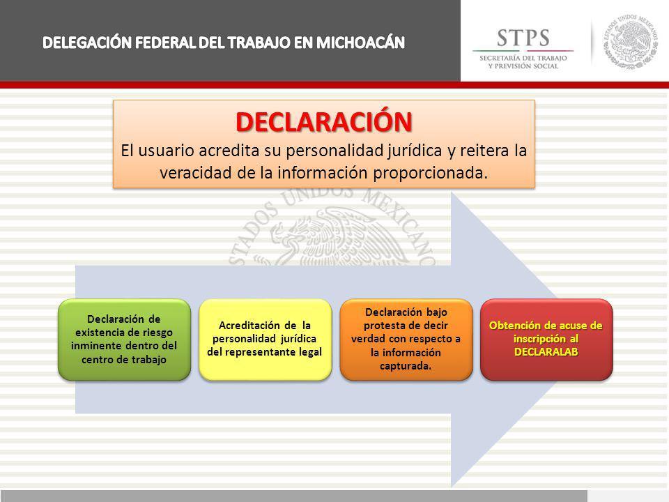 DECLARACIÓN El usuario acredita su personalidad jurídica y reitera la veracidad de la información proporcionada.DECLARACIÓN Declaración de existencia