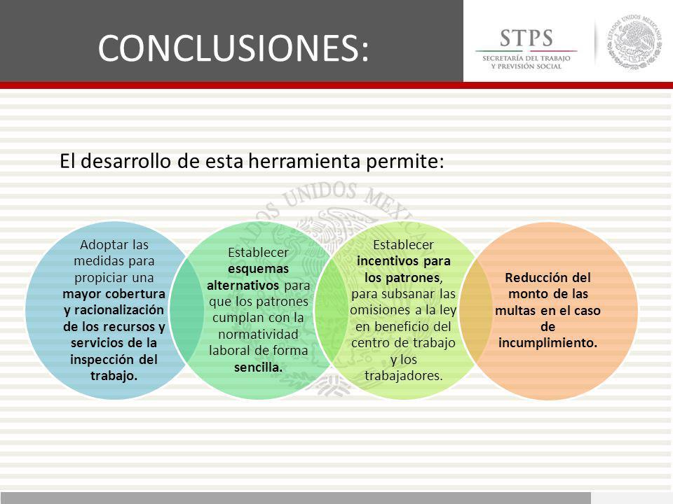 Adoptar las medidas para propiciar una mayor cobertura y racionalización de los recursos y servicios de la inspección del trabajo. Establecer esquemas