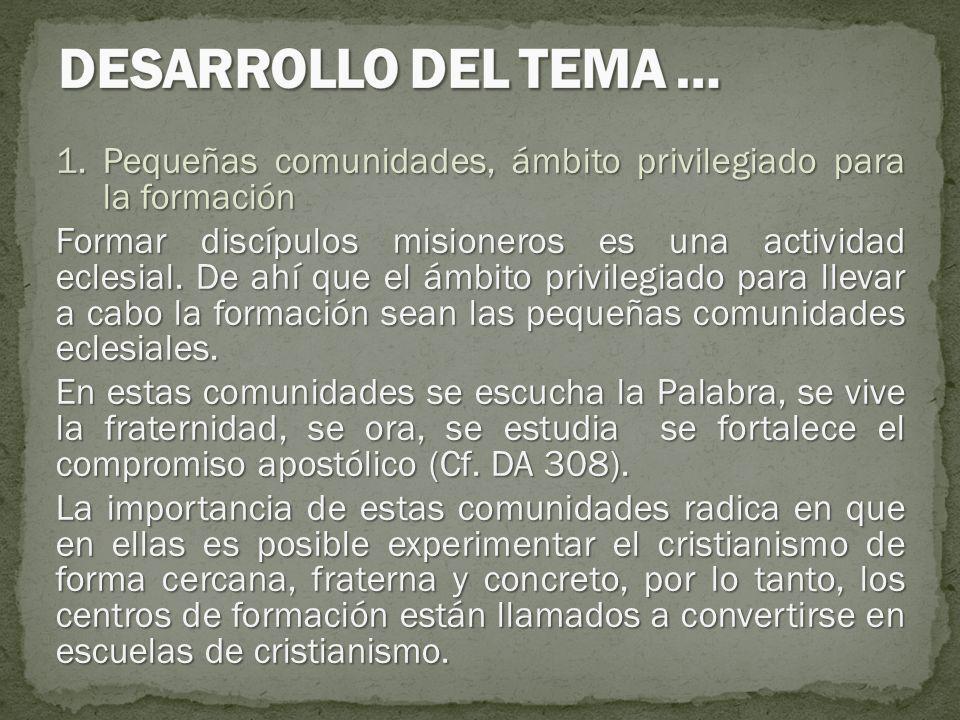 1.Pequeñas comunidades, ámbito privilegiado para la formación Formar discípulos misioneros es una actividad eclesial. De ahí que el ámbito privilegiad