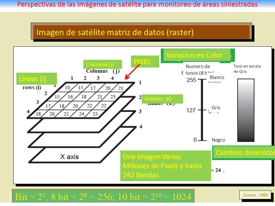 Perspectivas de las imágenes de satélite para monitoreo de áreas siniestradas Imagen de satélite matriz de datos (raster) Variacion en Color Cambios d